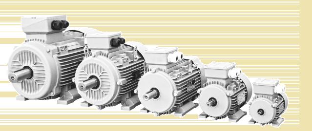 Sháníte vhodný 3 kW elektromotor? Toto jsou ty nejvíce preferované modely
